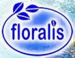 Флоралис